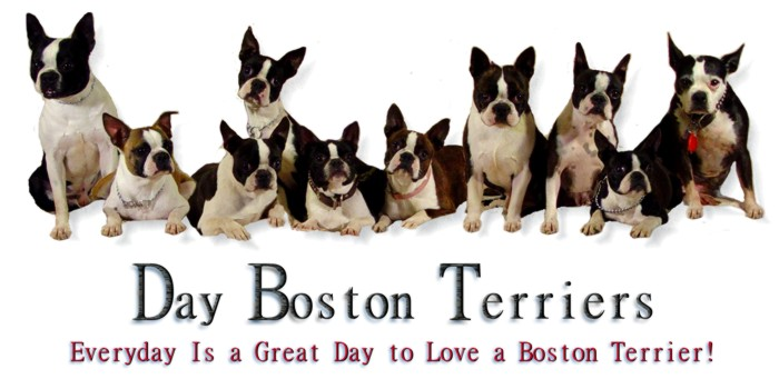 Day Boston Family